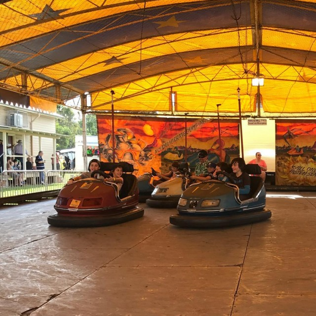 Dodgem adventure play connection bellingenshow